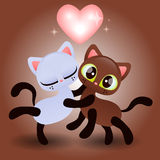 Cute kitten hugging another kitten Royalty Free Stock Images