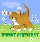 Cute kitten on meadow with white small daisies. Happy birthday billboard for children party. Vector illustration Stock Image