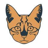 Cute kitten muzzle Vector illustration Stock Photos