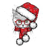 A cute kitten in a New Year hat and scarf. Vector illustration. Beautiful cat. Santa Claus. New Year`s and Christmas. stock images