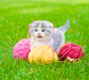 Cute kitten playing with clews of thread on green grass Stock Photo