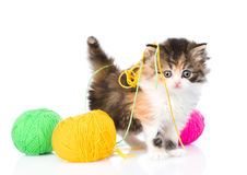 Cute kitten playing with clews of thread. isolated on white Royalty Free Stock Images
