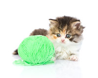 Cute kitten playing with clews of thread. isolated on white Stock Photography