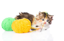 Cute kitten playing with clews of thread. isolated on white Stock Photos