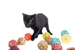 Cute kitten plays with straw balls Stock Photos
