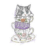 Cute kitten in a porcelain dish. Vector illustration for greeting card, poster, or print on clothes. Cute kitten in a porcelain dish. Vector for greeting card Stock Images