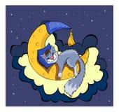 Cute Kitten Sleeping On The Moon. Stock Images