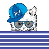 Cute kitten wearing glasses and a cap. Vector illustration. Beautiful cat. Stock Images