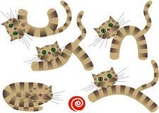 Cute kittens Stock Photos