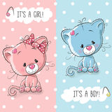 Cute Kittens Boy And Girl Royalty Free Stock Photos