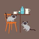 Cute kittens and milk Royalty Free Stock Photography