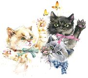 Cute kittens. playing cats watercolor illustration. stock illustration