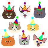 Cute kitties face with party hat set. Birthday, Christmas, wedding, kids royalty free illustration