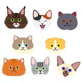 Cute kitties face set. Eight breeds of cats in one group vector illustration