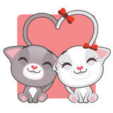 Cute kitties in love. Cute gray and white kitties in love Royalty Free Stock Photos