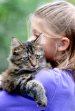 Cute kitty. Over the shoulder photo of a cute kitten being by a little girl royalty free stock images
