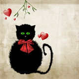 Cute kitty cat Christmas with mistletoe Stock Images