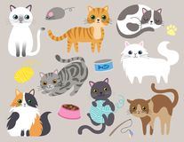 Free Cute Kitty Cat Vector Illustration Royalty Free Stock Photography - 106760757