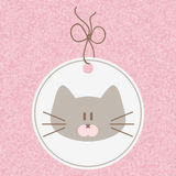 Cute kitty face Royalty Free Stock Images
