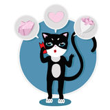 Cute kitty on the phone and choose a gift Royalty Free Stock Image