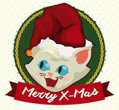 Cute Kitty with Santa's Hat and Bell for X-Mas, Vector Illustration Royalty Free Stock Photography