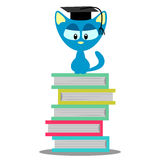 Cute kitty sitting on books Royalty Free Stock Images
