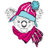 Cute koala in a cap and scarf. Koala vector. Greeting card with bear. Australia. Winter. Skier. Stock Photo