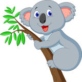 Cute koala cartoon Royalty Free Stock Image