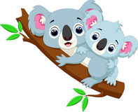 Cute koala cartoon on a tree Royalty Free Stock Photo