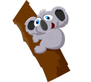 Cute koala cartoon on a tree Stock Photos