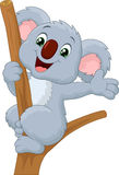 Cute Koala Cartoon Waving Hand Royalty Free Stock Images