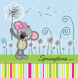 Cute Koala with dandelion Stock Photos