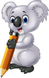 Cute koala holding pencil  on white background Royalty Free Stock Photography