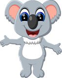 Cute koala Stock Image
