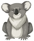 Cute koala sitting alone stock illustration