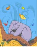 Cute koala on a tree Royalty Free Stock Photo
