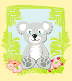 Cute koala Royalty Free Stock Photo
