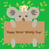 Cute koalas holding message board on abstract green floral background. Vector illustration. Royalty Free Stock Photography