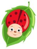 Cute ladybird stock illustration