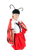 Cute ladybird Stock Images