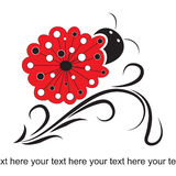 Cute ladybird background Stock Photography