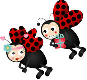 Cute ladybirds in love Stock Photography