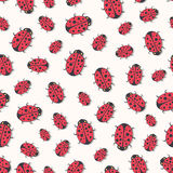 Cute ladybirds seamless pattern. Vector Print for kids textile, wrapping or wallpaper design Stock Photo