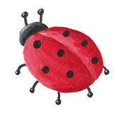 Cute Ladybug from back Royalty Free Stock Photos