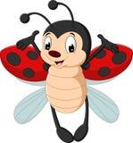 Cute ladybug cartoon. Illustration of Cute ladybug cartoon Royalty Free Stock Image