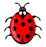 Cute ladybug cartoon isolated on white background. Vector ladybird illustration, decorative red beetle with seven dots on his wing Royalty Free Stock Images