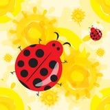Cute ladybug cartoon Royalty Free Stock Photos