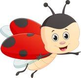 Cute ladybug cartoon Royalty Free Stock Images