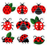 Cute ladybug vector Royalty Free Stock Photography
