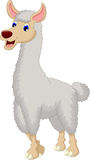 Cute lama cartoon Royalty Free Stock Photos